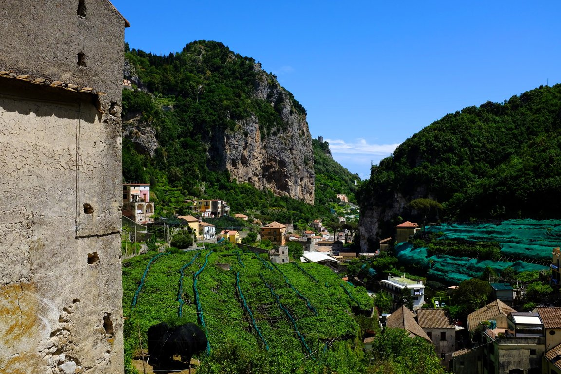 Lemons, Amalfi, Dace & Gilles photography